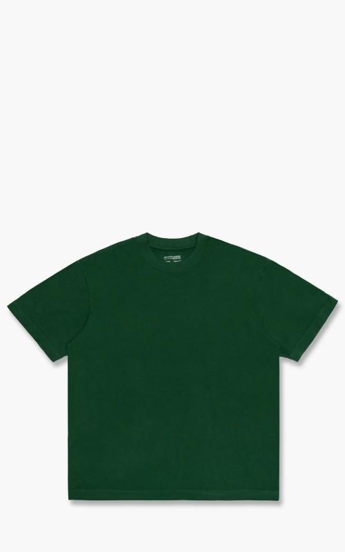 Lady White Co. Athens T-Shirt Pothos Green